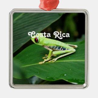 Costa Rica Tree Frog Metal Ornament