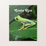 Costa Rica Tree Frog Puzzle