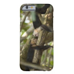 Costa Rica, Two monkeys resting on tree, lying Barely There iPhone 6 Case