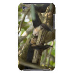 Costa Rica, Two monkeys resting on tree, lying Barely There iPod Case