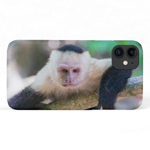 Costa Rica - White headed capuchin monkey iPhone 11 Case