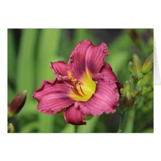 Costa Rican Bloom Card