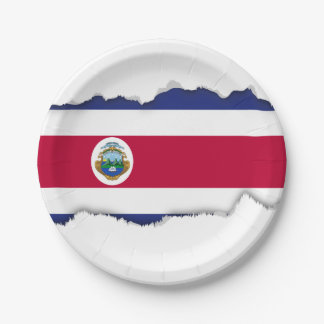Costa Rican Flag Paper Plate