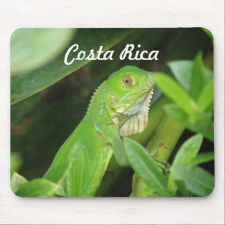Costa Rican Lizard Mouse Pad