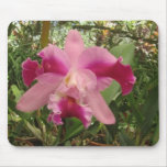 Costa Rican Orchid Mouse Pad