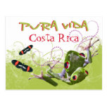 Costa Rican Pura Vida Postcard