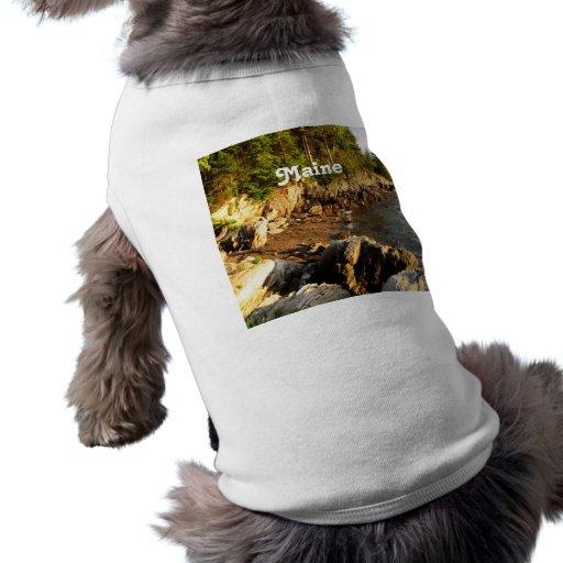 Costa rocosa de Maine Ropa De Perro