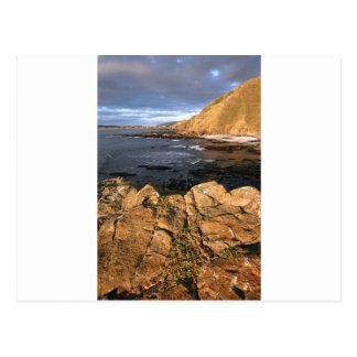 Costa rocosa escénica Nueva Zelanda Postal