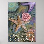 Costa Tidepool de Oregon Poster