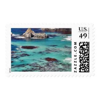 Costas costas grandes del océano de Sur Sellos