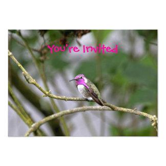 "Costa's Hummingbird 5"" X 7"" Invitation Card"