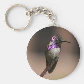 Costa's Hummingbird Key Chains