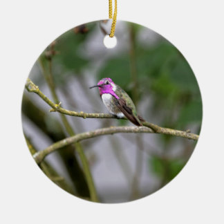Costa's Hummingbird Double-Sided Ceramic Round Christmas Ornament
