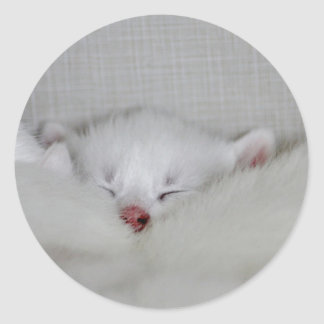 Cosy Little Nosey Classic Round Sticker
