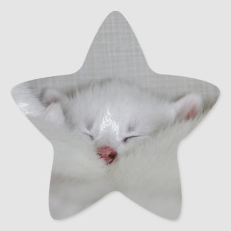 Cosy Little Nosey Star Sticker
