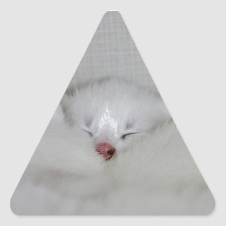 Cosy Little Nosey Triangle Sticker