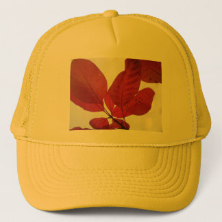 Cotinus 'Grace' Trucker Hat
