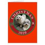 Coton De Tulear at Christmas Greeting Card