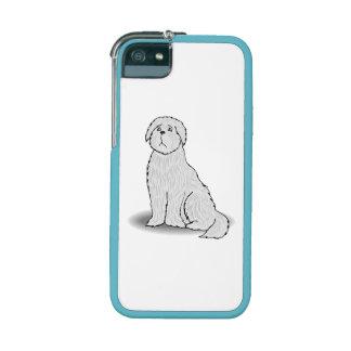 Coton de Tulear iPhone 5/5S Cases