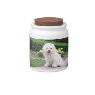 Coton de Tulear Dog Treat Candy Jar