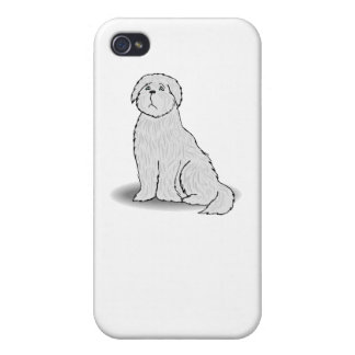 Coton de Tulear iPhone 4/4S Covers