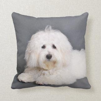 Coton de Tulear - Joci Throw Pillows