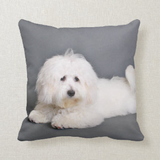 Coton de Tulear - Joci Throw Pillow