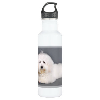 Coton de Tulear - Joci Water Bottle