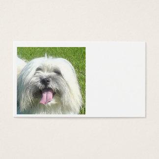 coton de tulear.png business card
