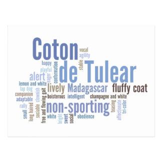 Coton de Tulear Postcard