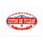 Coton De Tulear  Postcards