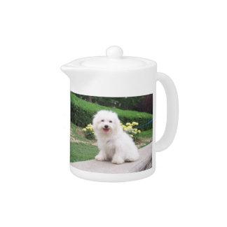 Coton de Tulear Teapot