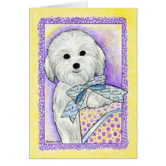 Coton de Tulear Thank You Card