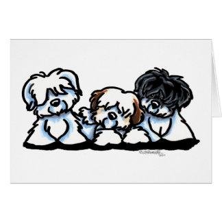 Coton De Tulear Trio Card