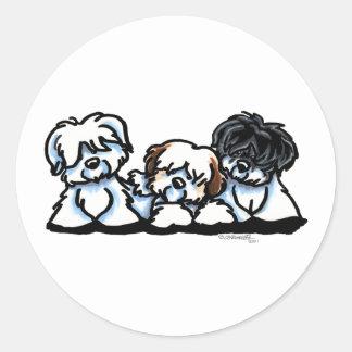 Coton De Tulear Trio Classic Round Sticker