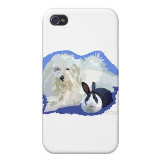 Coton de Tulier and a Dutch Bunny Cuddling iPhone 4 Cases