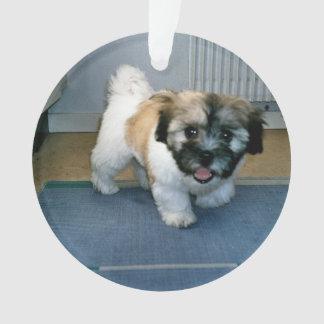 coton puppy 2.png ornament
