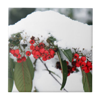 Cotoneaster Fruits with a Snow Hat Ceramic Tile