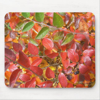 Cotoneaster Leaves in Autumn Mousepad