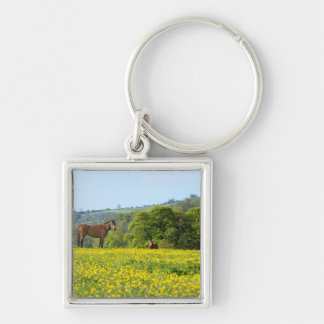 Cotswolds, UK Silver-Colored Square Keychain