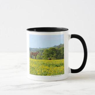 Cotswolds, UK Mug