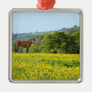 Cotswolds, UK Square Metal Christmas Ornament