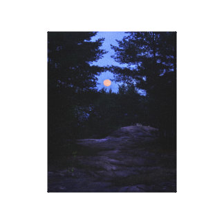 Cottage country moonrise in the woods canvas print