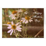 Cottage Garden Daisies Floral Mothers Day Card