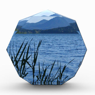 Cottage Grove Lake in Blue Award