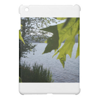 Cottage Grove Lake in Summer iPad Mini Covers