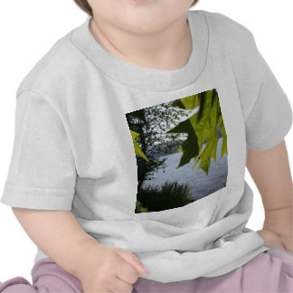 Cottage Grove Lake in Summer T-shirts