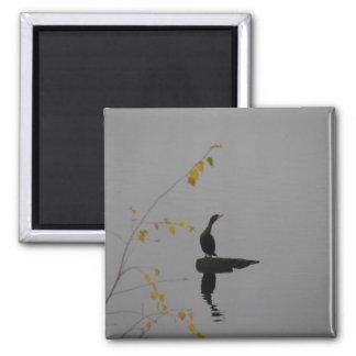 Cottage Lake Cormorant Bird magnet