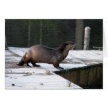 Cottage Lake Otter Card