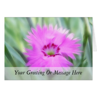 Cottage Pinks - Dianthus Card